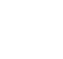 M-sys,inc